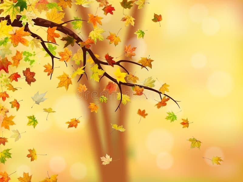 Hösten förgrena sig stock illustrationer