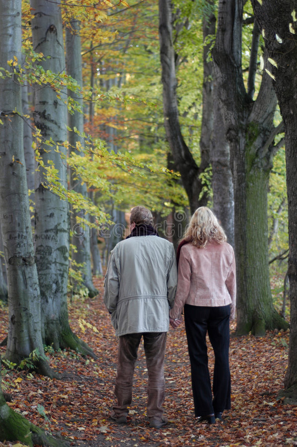 hösten går royaltyfri bild