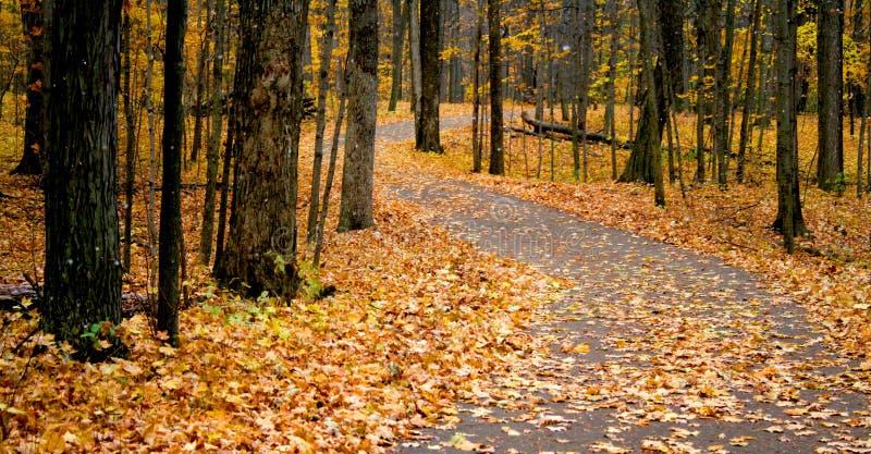 hösten går långt arkivbilder
