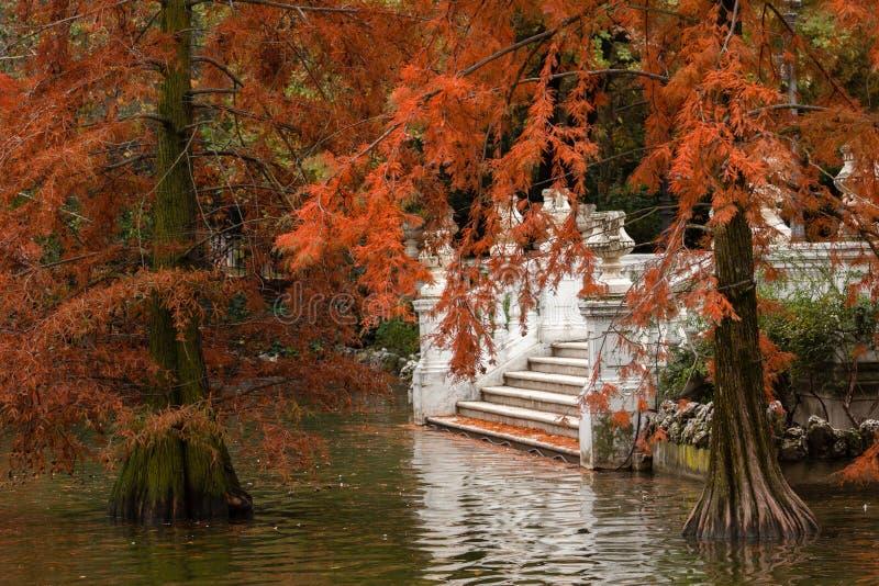 Hösten i Retiroen parkerar i Madrid arkivbilder