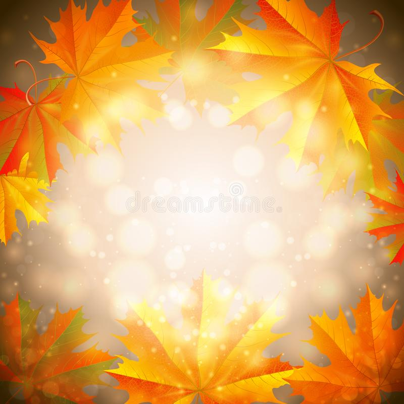Hösten lämnar bakgrund vektor illustrationer