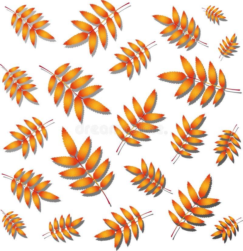 hösten låter vara rönnen stock illustrationer