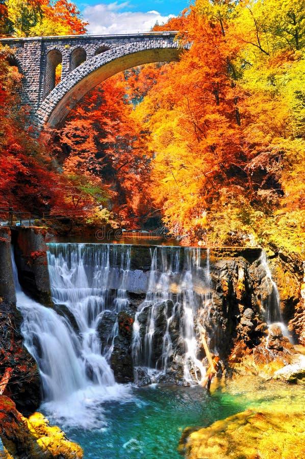 Hösten landskap Den berömda Vintgar klyftakanjonen nära blödde, Triglav, Slovenien, Europa royaltyfri foto