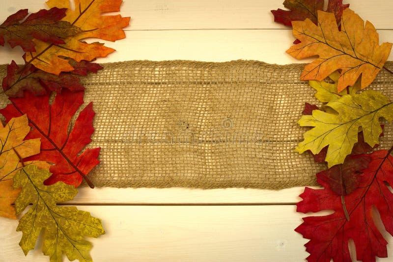 Hösten nedgången, bakgrund på vitt sörjer med bladgränsen arkivfoto