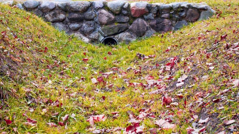 Hösten parkerar royaltyfri foto