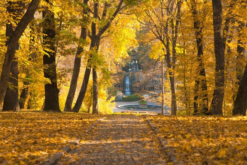 Hösten parkerar den stenlade vägen royaltyfri bild