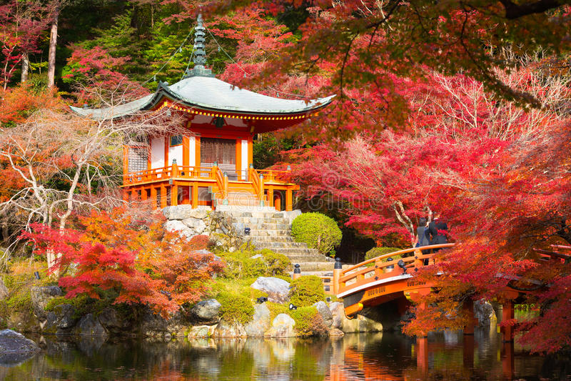 Hösten parkerar i templet Japan arkivfoto