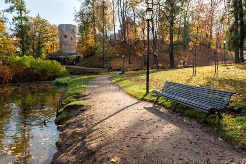 Hösten parkerar med promenad längs sjön i den Cesis staden, Lettland arkivfoto