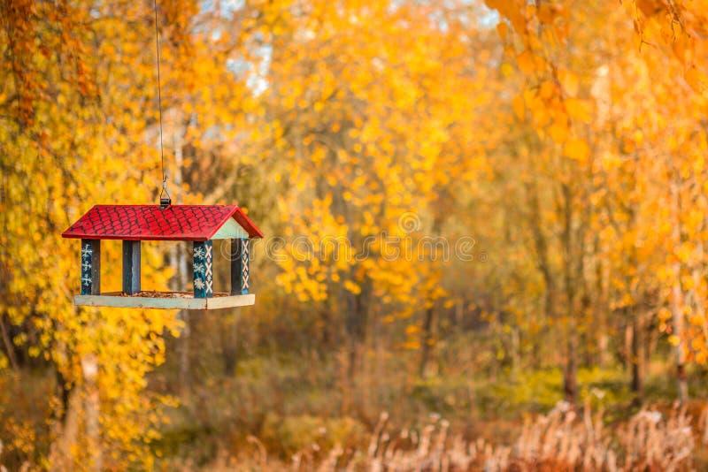 Hösten parkerar och voljären arkivbilder