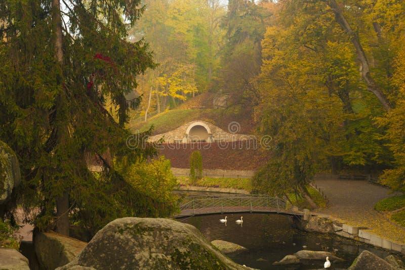 Hösten parkerar plats med floden royaltyfri fotografi