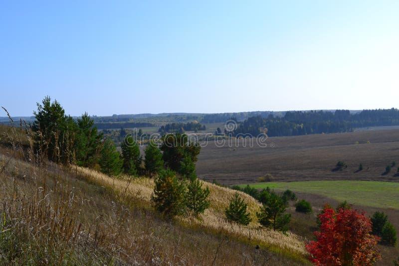 Höstfält i Udmurtia royaltyfria foton