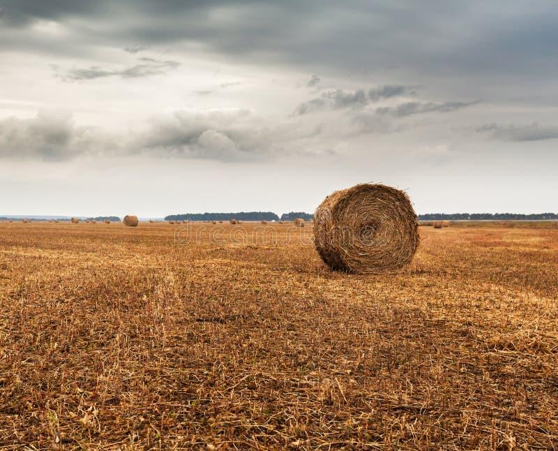 Höstfält med kärvar av hö och dramatisk himmel royaltyfria foton