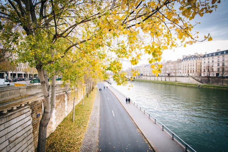 Höstfärg längs Seinen, i Paris, Frankrike arkivfoton