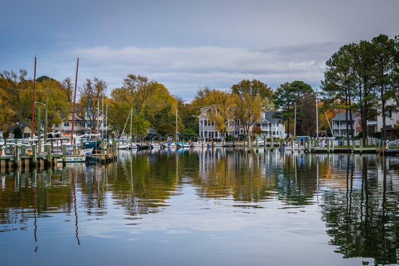Höstfärg på hamnen i St Michaels, Maryland royaltyfri foto