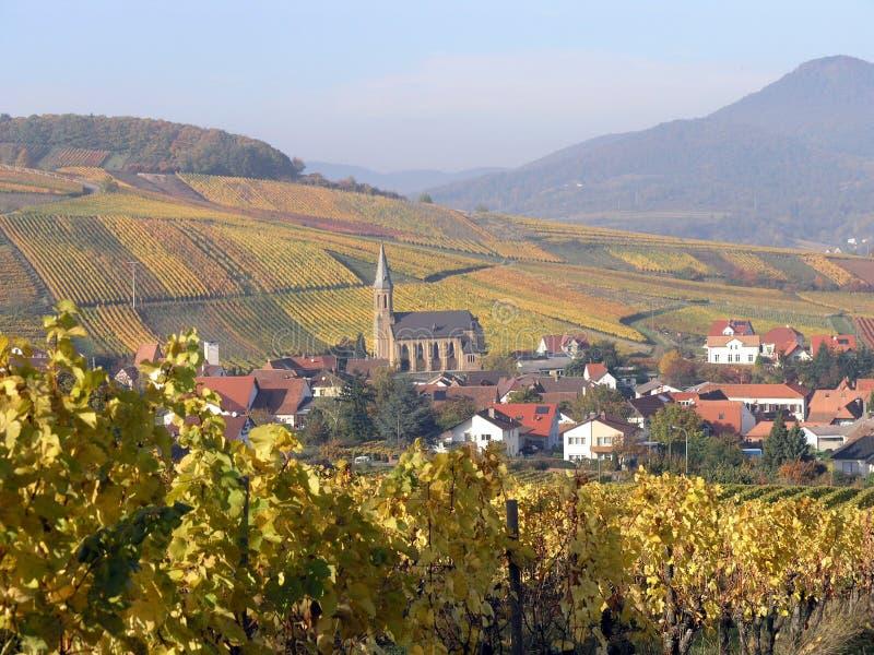 Download Höstfärger arkivfoto. Bild av färger, fall, orange, wine - 506708