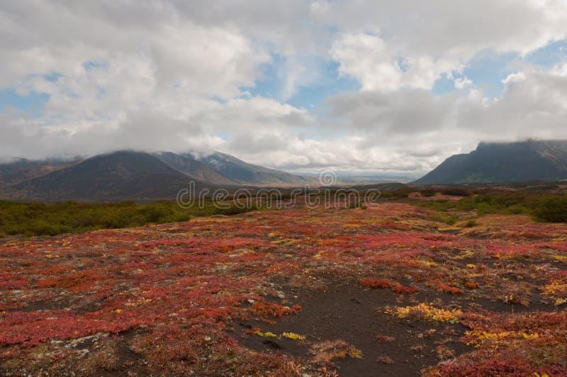 Höstfärger halvö på för den Nalycheva dalen, Kamchatka royaltyfri bild