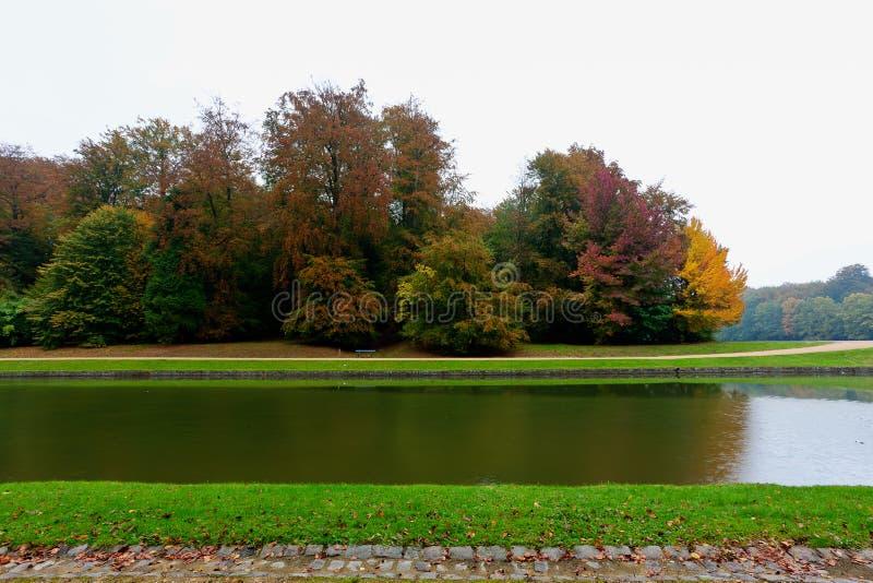 Höstfärger, parkerar Tervuren, Bryssel, Belgien arkivbild