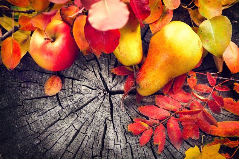 Höstfrukter och färgrika sidor över gammal sprucken träbakgrund fall tacksägelse royaltyfri fotografi