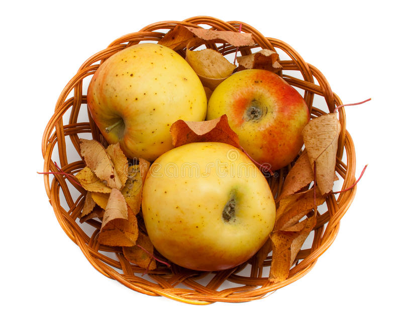 Höstgarneringen med äpplen och lämnar i en korg royaltyfri foto