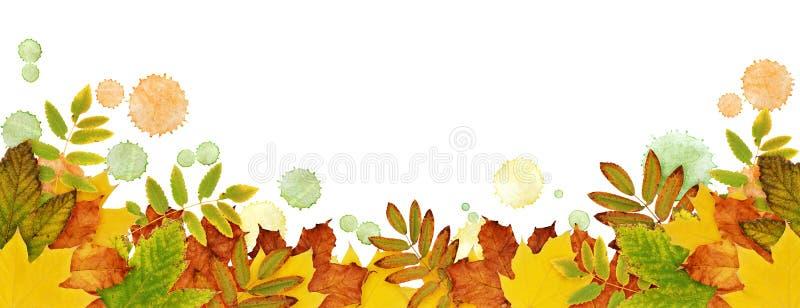 Höstgränsen med torkad sidor och målarfärg bläckar ner i guling, orangutang stock illustrationer