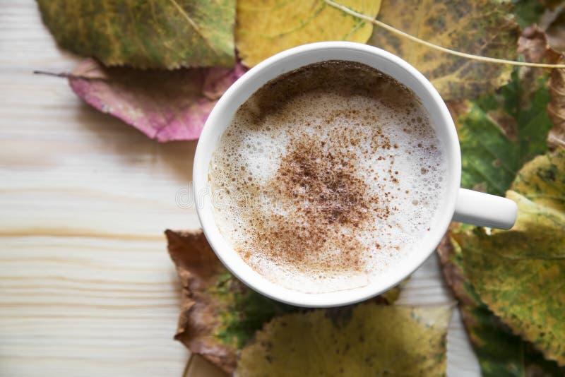 Höstkaffekopp, cappuccino med kanelbruna och torkade sidor, till arkivfoto