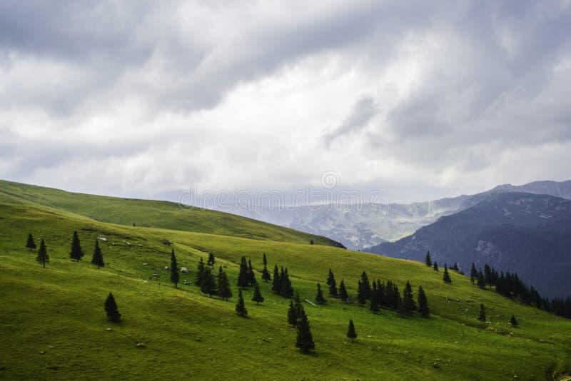 Höstkullar och berg, landskap royaltyfria bilder