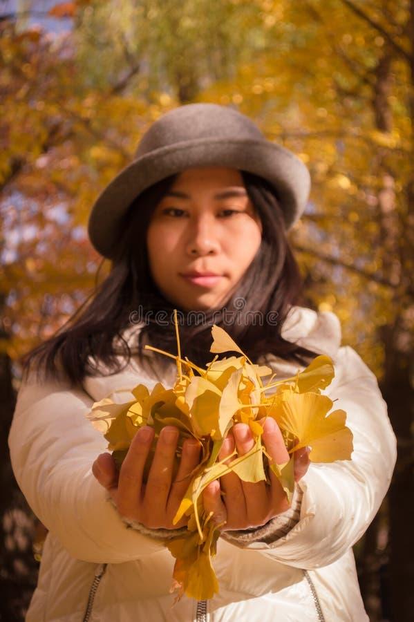 Höstkvinnahänder med gula nedgångsidor royaltyfria bilder
