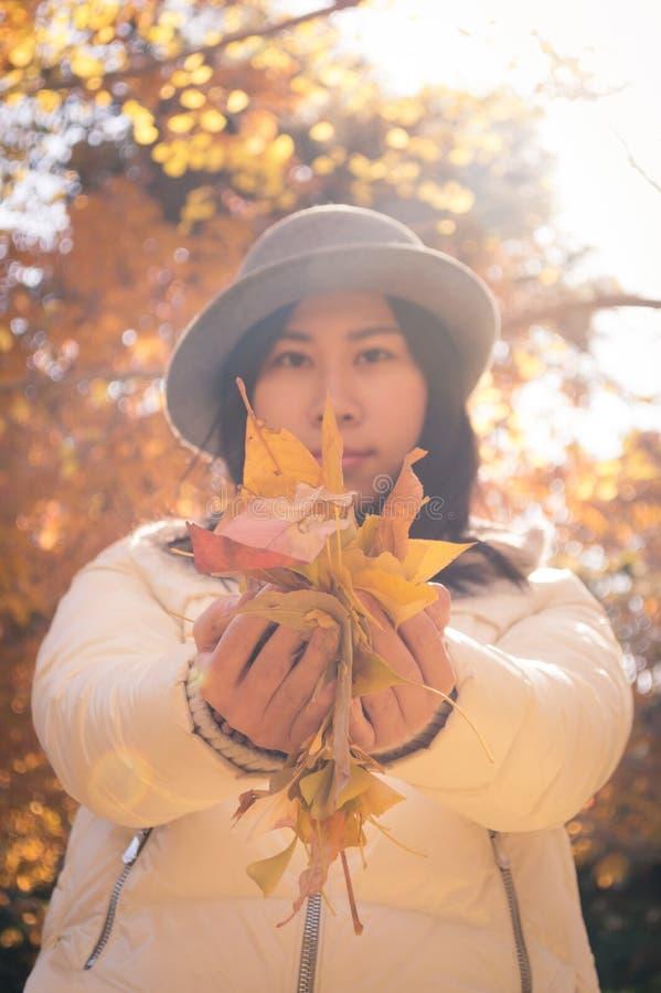 Höstkvinnahänder med gula nedgångsidor 2 arkivbild