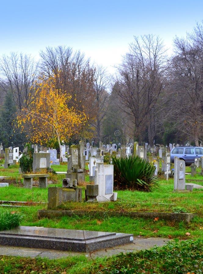 Höstkyrkogården parkerar arkivfoton