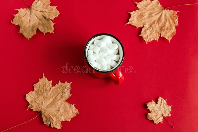 höstlönnlöv och kopp med marshmallower arkivbilder