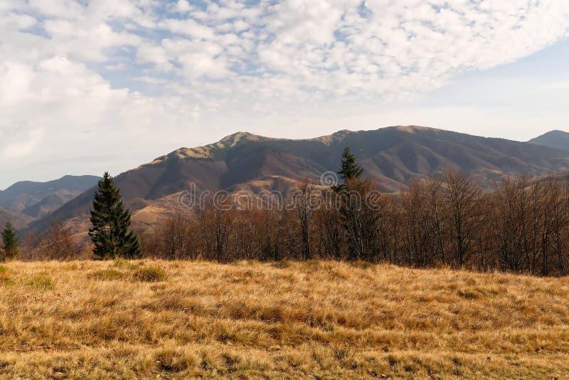 Höstlandskap av de Carpathian bergen arkivbilder