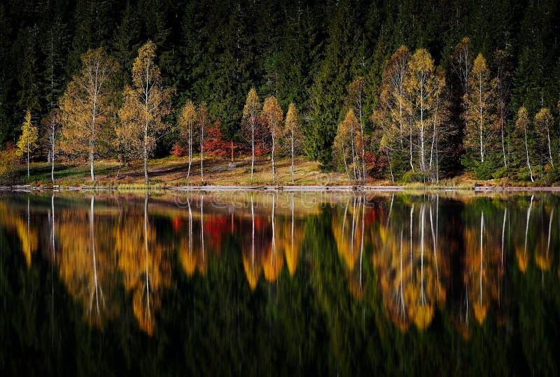 Höstlandskap i bergen - sjö för ` s för St Ana, Rumänien royaltyfria bilder