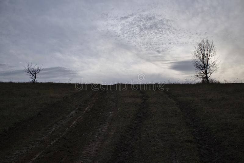 Höstlandskap i mörkt lynne Lantlig väg mellan två kala träd royaltyfri bild