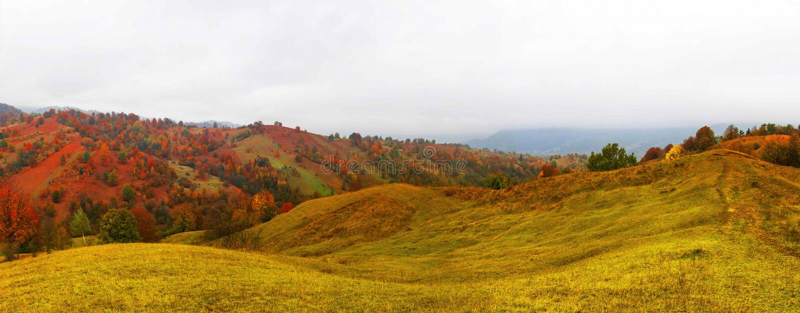 Höstlandskap med scenisk färgrik sikt av ängar och träd royaltyfria bilder