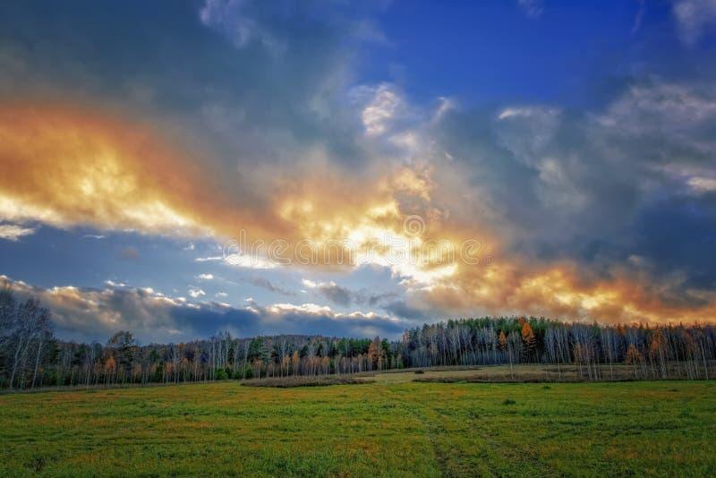 Höstlandskap med torkat gräs i ängen på bakgrunden av skogen och solnedgånghimmel royaltyfri bild