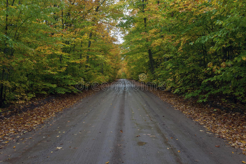 Höstlandskap med vägen och härliga kulöra träd, Marquette County, Michigan, USA royaltyfri bild
