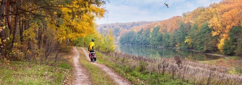 Höstlandskap, panorama, baner - cyklisten nära sjön som hållande ögonen på flyg av engelska harhunden royaltyfri foto