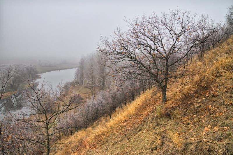 Höstlandskap - sikt av den branta flodstranden som täckas med dimma, över ängarna mellan kullar och skogar fotografering för bildbyråer