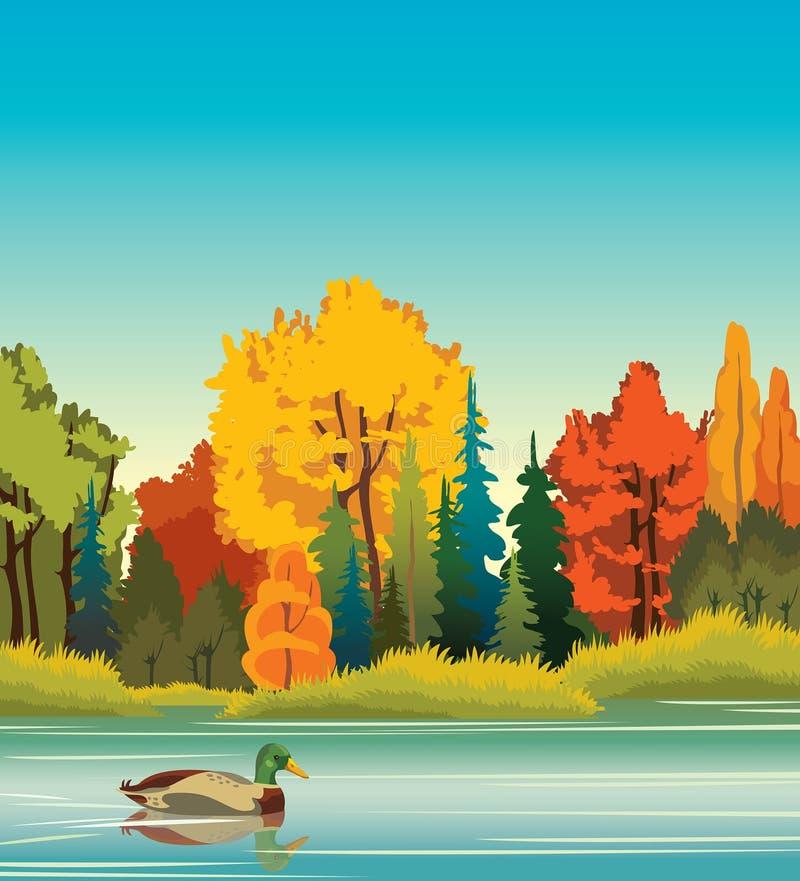 Höstlandskap - and, skog, sjö stock illustrationer