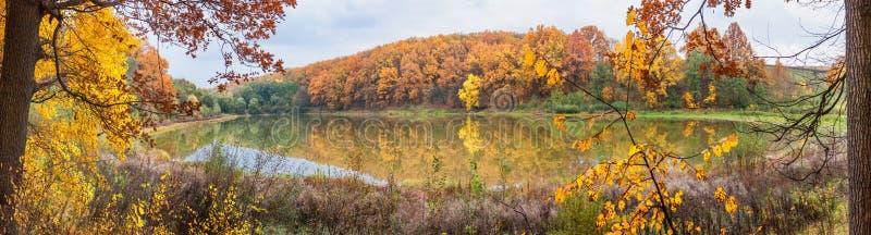 Höstlandskap - skogen vid sjön i den soliga höstdagen royaltyfri fotografi
