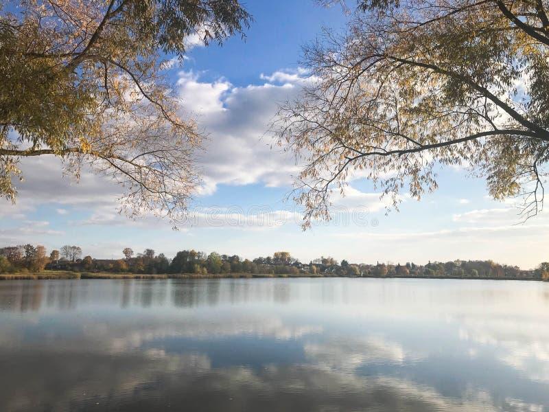 Höstlandskap som är härligt med träd och gula sidor på sjön mot den blåa himlen på en solig dag royaltyfri fotografi