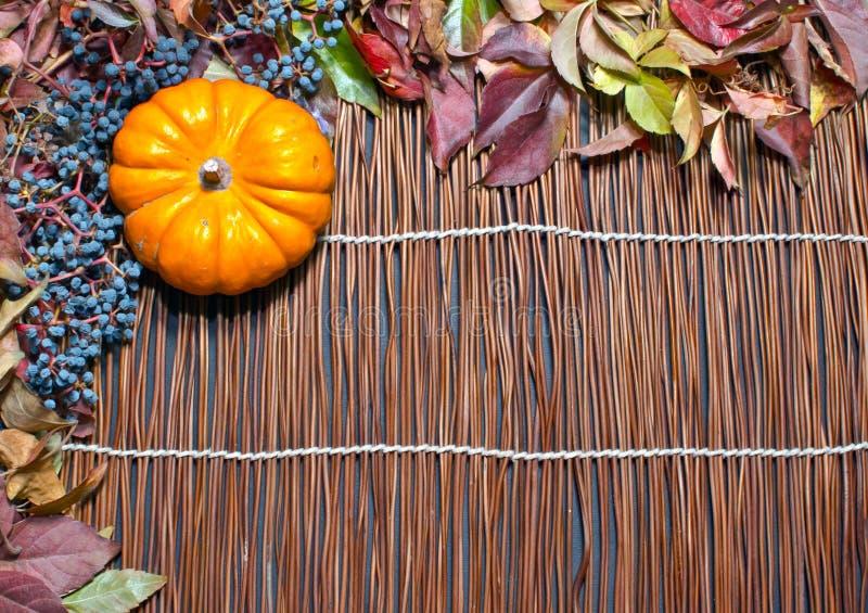 Download Höstleaves över Wood Bakgrund Fotografering för Bildbyråer - Bild av rött, kant: 27288137