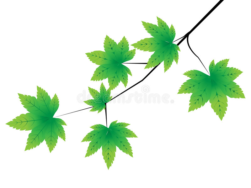 höstleaves stock illustrationer