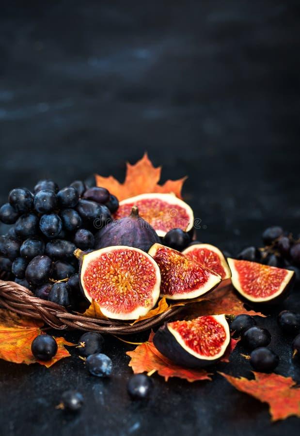 Höstliga nya mogna fikonträd och purpurfärgad druva arkivbild