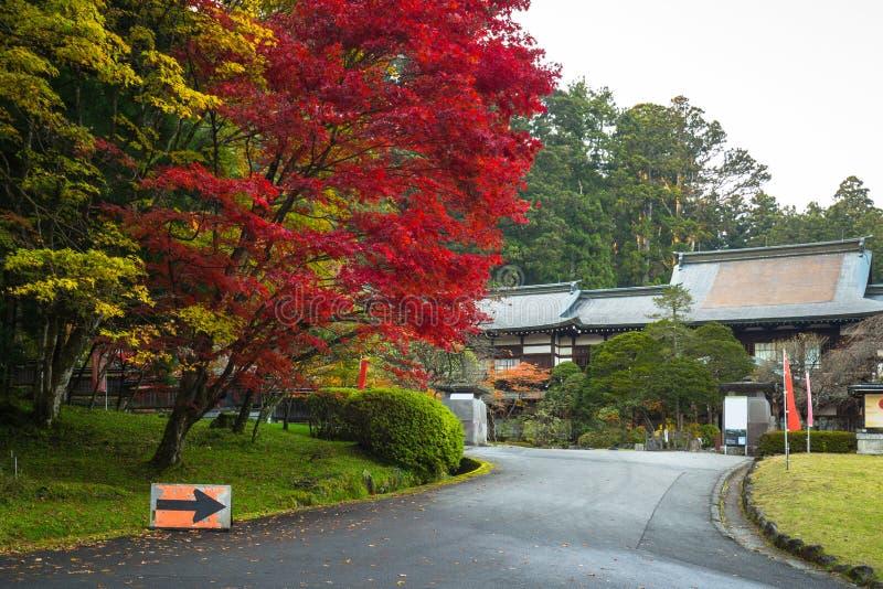Höstligt landskap av den Nikko nationalparken arkivfoto