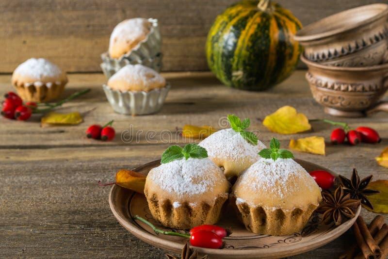 höstlivstid fortfarande Hemlagade muffin med pudrat socker med kanelbruna pinnar, anisstjärnor, pumpor, bär av nyponet och autum fotografering för bildbyråer