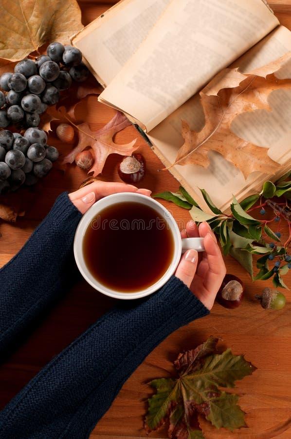 Höstlynne, kvinnainnehavkopp av varmt te i händer arkivfoton