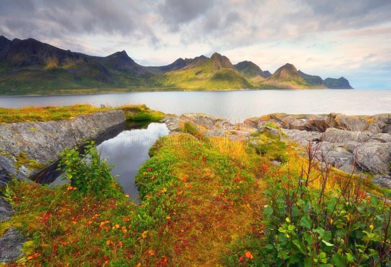 Höstnatur av Norge fotografering för bildbyråer