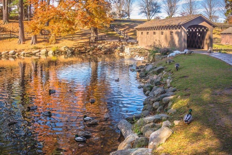 Höstnaturplats med den härliga sjön arkivbilder