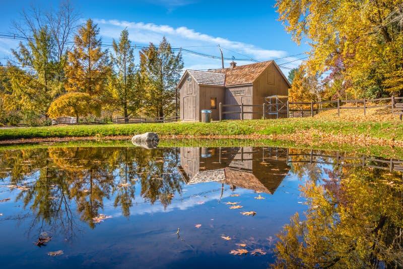 Höstnaturplats med det härliga dammet fotografering för bildbyråer